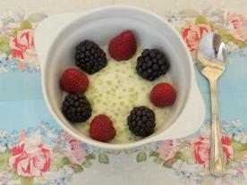 pudding tapioka